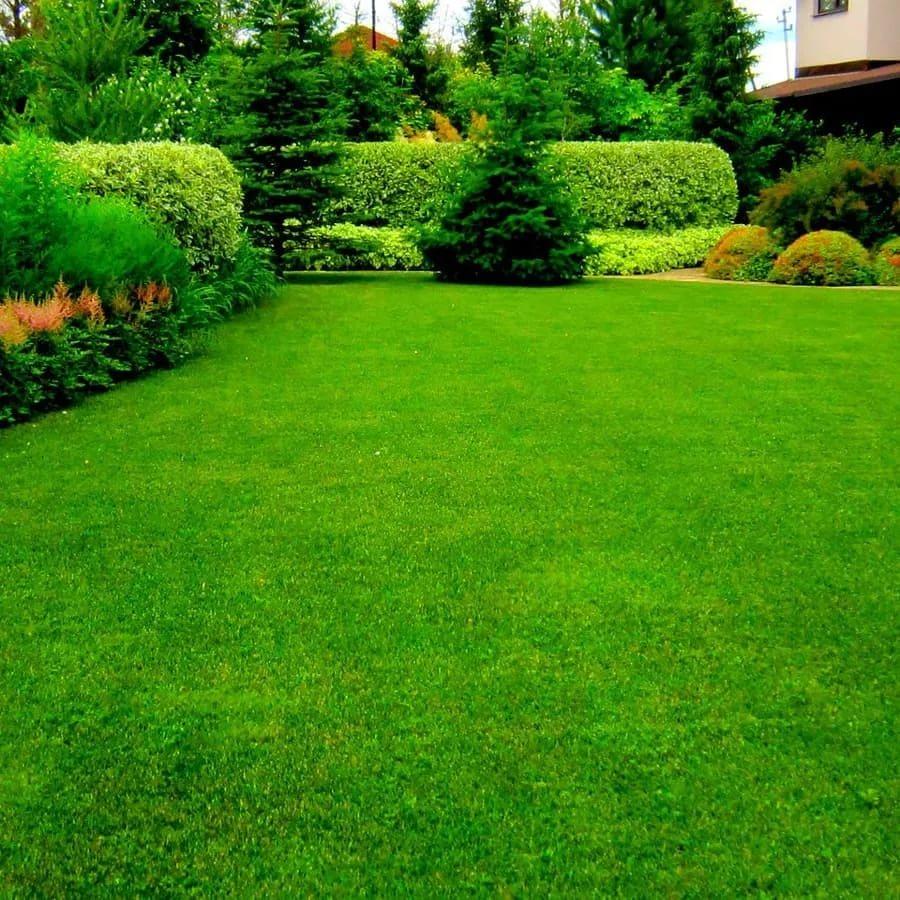 Advantages Of Artificial Grass For Your Garden
